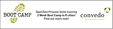 Boot_camp_banner_for_website.png